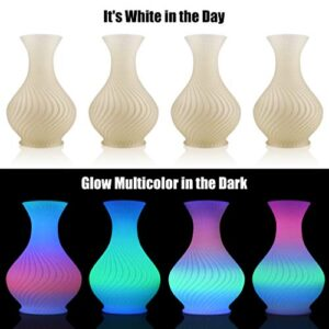 AMOLEN PLA 3D Printer Filament Glow in The Dark Multicolor
